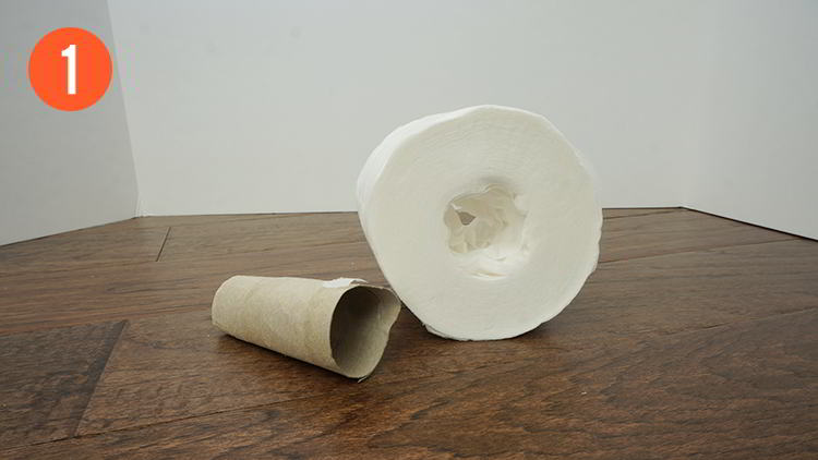 Homemade Toilet Paper Roll Fleshlight - Step 1