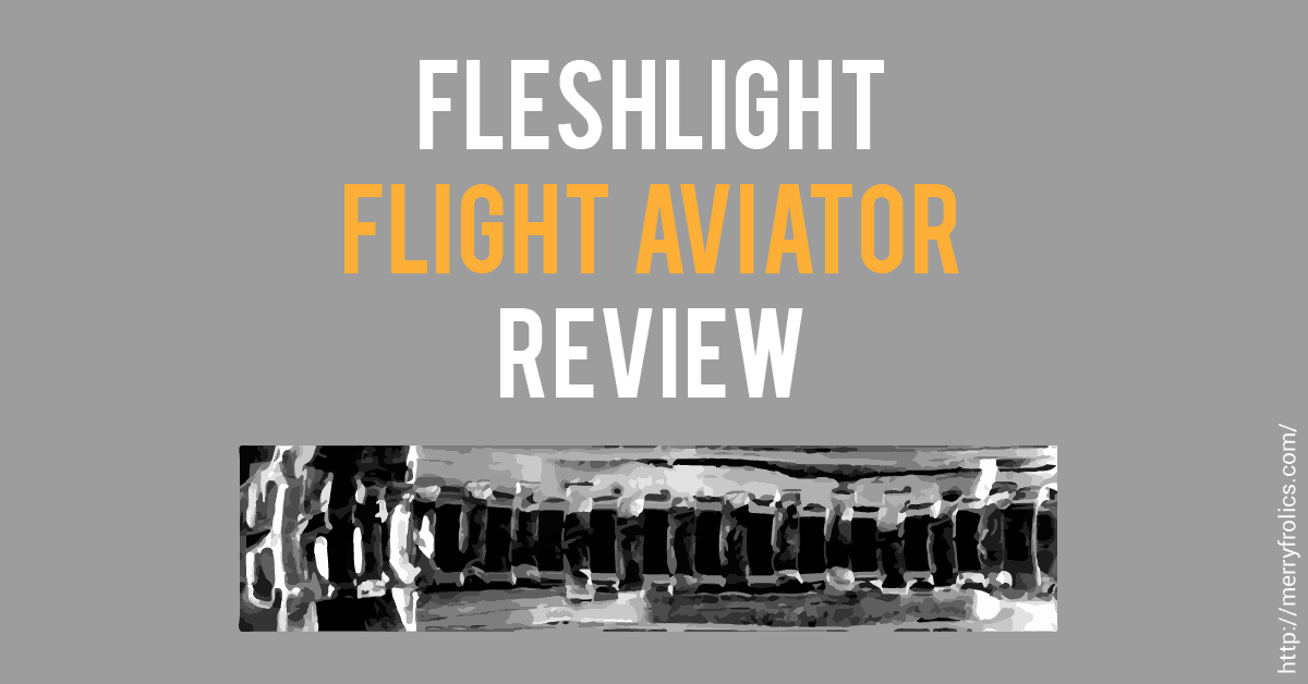 Fleshlight Flight Aviator review